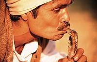 A snake charmer is kissing a cobra at Delhi  India