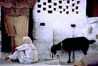India, Rajahstan, Man and Goat