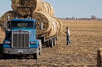 Lexington, Nebraska - A worker loads bales of hay on a truck in a farm field