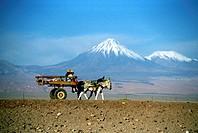 Chile, San Pedro de Atacama, An Indian cart before some Andes Volcanoes
