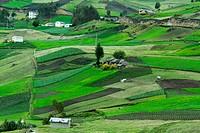 Rural Farm Country, Ecuador