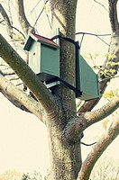 Bird house in a tree.