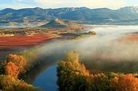 Autumn in La Rioja Spain