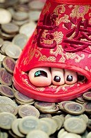 Chinese feet on European money