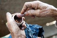 old hands with tobacco in indonesia