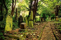 Abney Park Cemetery, Stoke Newington, London, England, UK, Europe.