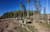 Ponsse Beaver harvester  Location Kutumäki Suonenjoki Finland Scandinavia Europe