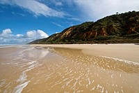 Seventy Five Mile Beach  Fraser Island, Great Sandy National Park, Queensland, Australia