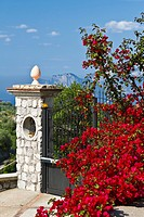 Bougainvillea flowers and a stone gate near Massa Lubrense, Italy