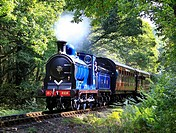 Calendonian Railway ´Class 812´ ,0-6-0 ,No  828 hauls a passenger train through Northwood on the Severn Valley Railway, Worcestershire, England, Europ...