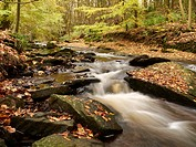 The river Dane at autumn in the Peak District National Park Cheshire UK