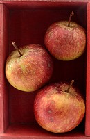 Three red apples stacked in a wooden box.