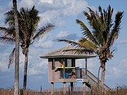 Lifeguard tower at the beach flanked by two palm trees on a sunny day with a few clouds in the sky.