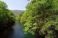 Eume river and Fragas riparian forest Natural Park, A Coruña, Galicia, Spain