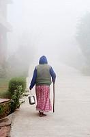 Woman with a walking stick on a misty path, Ma Dham Ashram for widows, Vrindavan, Uttar Pradesh, India