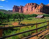Gifford Homestead Farmhouse in Capitol Reef National Park, Utah, USA from large format original