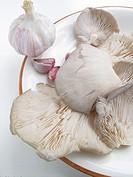 Pleurotus Ostreatus,mushrooms and garlic
