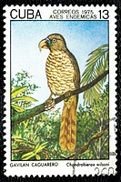 Cuban stamp.