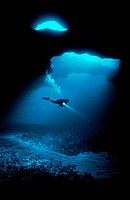 Diver in the Cathedral Sea Cave, discovered in 2001  It´s one of the largest in the South Pacific  Tonga