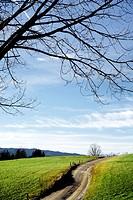Countryside, Slovenia.