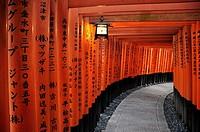 Thousands of vermilion torii gates, Fushimi Inari sanctuary. Japan, Honshu, Kinki, Kyoto, Fushimi Inari Taisha. (/Julien Garcia)