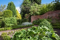 View of the walled kitchen garden in summer, Bexon Manor Kent England.