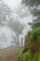 A woman on mountain road, Himalayan range, Almora, India.