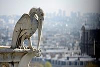 Gargoyle on the top of Notre-Dame de Paris in Paris,France,Europe.
