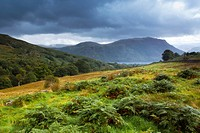 England, Cumbria, Lake District National Park. Open fells near Aira Beck above Aira Force, a powerful body of water near the shores of Ullswater.