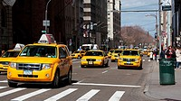 Street scene with cabs going downtown on Fifth Avenue in Manhattan, New York, NY, USA.