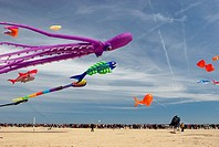 Kites in Malvarrosa beach, Valencia, Spain