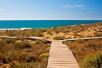 Calblanque, Mediterranean beach. Murcia, Spain