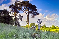 Old graveyard, Rathconrath, County Westmeath, Ireland