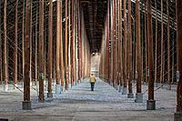 A man walks through the largest rustically-built structure in the world called a stick shed, built in 1941 to store wheat, Murtoa, Victoria Austrlia.