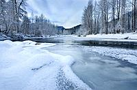 Ice and frost along the Birkenhead river near Pemberton, Coast Mountains British Columbia.
