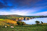 Pwllgwaelod Fishguard Pembrokeshire Wales.1015