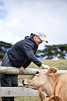 A young farm hand with jersey cow, south Gippsland, Victoria state Australia1015