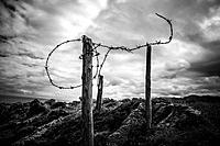 Barbed wire on the coast of Llanes.Asturias.España.