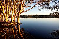 Lake Aisnsworth, Lennox Head, NSW, Australia.