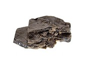 Biotite, precious stone on white background, studio isolated photo.