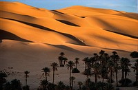 Sand dunes of the Grand Erg Occidental, at sunset, at the oaisis of Taghit in North west Algeria.