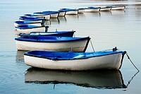 Estany de Banyoles lake, Banyoles, Pla de l´Estany, Girona province, Catalonia, Spain