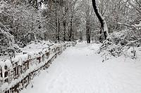 Snowlandscape in the nature reserve ´Zwin´ at Knokke-Heist, Belgium. Winter 2010.