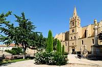 Collégiale Saint Laurent Church (Nostradamus Tomb) Salon-de-Provence Provence France.