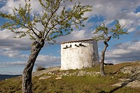 Dovecote and almond trees, Vilvestre, Arribes del Duero Natural Park, province of Salamanca, Castilla y Leon, Spain