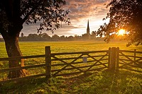 Salisbury cathedral and the west harnham water meadows.