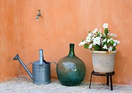 Garden still life with watering can, round vase and pot with white petunias.