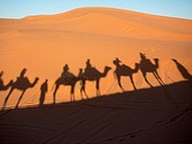 Shadow of riders and camels through sahara desert in Erg Chebi, Morrocco.