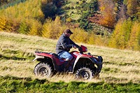Farmer on Quad Bike with woods in background. Autumn.