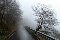 Landscape at Picos de Europa, Asturias, Spain.